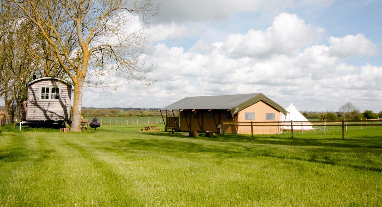 Safari Tent Panorama