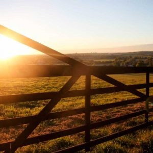 Highway Hill Fence View